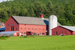 Main Barn, Pole Barn, and Silo at Vermont Agricultural Business Center, Brattleboro, VT