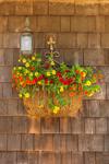 Colorful Flower Boxes on Cedar-shingled Builiding in Menemsha, Martha's Vineyard, Chilmark, MA