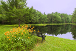 Orange Day-lilies and Bench Overlooking Sparkle Plenty Pond, Mulpus Brook Acres Property, Lunenburg, MA