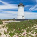 Edgartown Lighthouse with Beach Roses in Bloom, Martha's Vineyard, Edgartown, MA