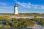 Beach Roses in Bloom at Edgartown Lighthouse in Evening Light, Martha's Vineyard, Edgartown, MA
