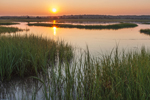 Sunrise over Salt Marsh at Three Mile Harbor, Long Island, East Hampton, NY