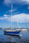 "Sailboat ""Canty"" in Camden Harbor, Camden, ME"