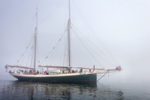 """Schooner """"Angelique"""" in Fog Leaving Camden Harbor, Camden, ME"""