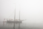 "Schooner ""Lewis R. French"" in Fog Leaving Camden Harbor, Camden, ME"