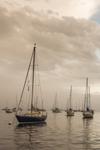 Lifting Fog over Boats in Mooring Field in Camden Harbor, Camden, ME