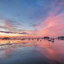 Colorful Sunrise over Boats in Camden Harbor, Camden, ME