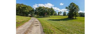 Pegan Lane through Green Meadow and Trees, Natick, MA