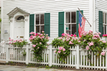 White Picket Fence with Roses and American Flag at Historic Rev. John Rathbone House, Built 1775, Stonington, CT