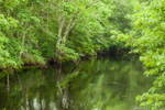 Pawcatuck River at Charlestown and Richmond Town Lines, RI