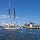 Tallship Schooner