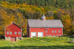 Red Barns in Autumn at High Valley Farm, Taconic Mountains, Copake Falls, NY