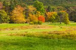 Grassy Fields and Trees with Foliage in Early Autumn at High Valley Farm, Taconic Mountains, Copake Falls, NY