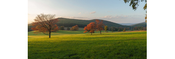 Late Evening Light over Fields in Early Autumn at High Valley Farm, Taconic Mountains, Copake Falls, NY