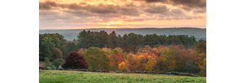 Sunrise View over Fields and Trees in Autumn, Dover, MA