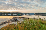Somes Harbor in Early Morning, Village of Somesville, Mount Desert Island, Mount Desert, ME