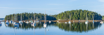 View of Harbor Island and Sailboats on Still Waters of Buck's Harbor, Brooksville, ME