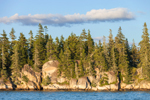 Conifer Forest and Steep, Rocky Shoreline of Ram Island, Seal Bay, Vinalhaven, ME