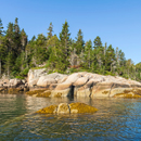 Rocky Shoreline of Big Hen Island, East Penobscot Bay, Vinalhaven, ME