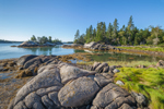 Shoreline along Cove on Little Hen Island, Seal Bay, Vinalhaven, ME