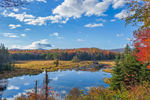 Wetlands at Shep Meadow in Autumn, Green Mountain National Forest, Somerset, VT