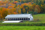 Big White Barn in Autumn, Berkshire Mountains, Hawley, MA