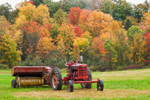 McCormick Farmall Model M Tractor in Autumn, Pioneer Valley, Montague, MA