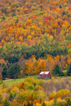 Old Red Barn Surrounded by Forests with Fall Foliage, Taconic Mountains Region, Petersburgh, NY