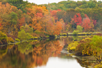 Fall Foliage along Shores of Charles River, Medfield and Sherborn, MA