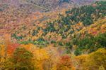 Taconic Mountains with Fall Foliage, Taconic Mountain Region, View from Berlin, NY