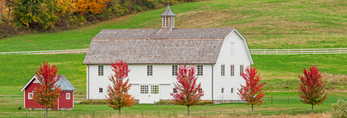 Big White Barn and Little Red Shed with Cornfield and Green Fields in Autumn, Taconic Mountains Region, Hillsdale, NY