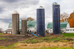 Barns and Silos on Working Farm in Hudson River Valley in Autumn, Taconic Mountains Region, Northeast, NY