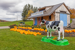 Pumpkin Stand and Farm Store at Willow Brook Farms in Autumn, Hudson River Valley and Taconic Mountains Regions, Northeast, NY