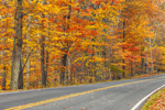 View of Skyline Drive through Hardwood Forests in Autumn, Shenandoah National Park, Page County, VA