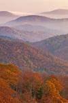 Blue Ridge Mountain Layers at Sunrise in Autumn, View from Skyline Drive, Shenandoah National Park, Rappahannock County, VA