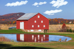 Red Barn with Reflections in Small Pond near Cedar Grove, Frederick County, VA