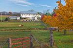 Meadow Brook Farm in Autumn, near Centerport, Centre Township, Berks County, PA