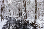 Roaring Brook and Forests after Fresh Snowfall in Nipmuck State Forest, Stafford, CT