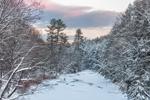 Williams River after Snowstorm, Rockingham, VT
