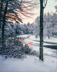 Woodlands at Sunrise along the Millers River after Snowstorm, Bearsden Conservation Area, Athol, MA