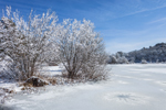 Frozen Duarte Pond after Snowstorm, Martha's Vineyard, West Tisbury, MA