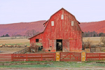 Big Red Barn with Red Fence and Sheep in Background, Tennessee Scenic Parkway, Grassy Cove, TN