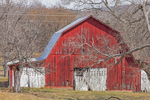 Red Barn with White Doors, Wilson County, Holloway, TN
