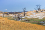 Virginia Farmland with Dusting of Snow, Old Barn in Background, Pulaski County, Draper, VA