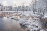 Lawrence Brook and Wetlands after Early Spring Snowfall, Royalston, MA