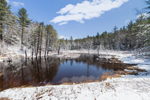 Pond, Forest, and Freshwater Marsh after Early Spring Snowfall, Richmond, NH