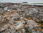 Rocky Coastline with Dusting of Snow along Atlantic Ocean, East Gloucester, MA