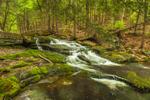 Cascades on Brewer Brook at Bascom Hill Farm, Westhampton, MA