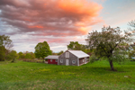 Sunset over Wooden Barn, Apple Tree, and Meadow at Bascom Hill Farm, Westhampton, MA