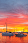 Dramatic Sunrise over Boats in Oak Bluffs Harbor, Martha's Vineyard, Oak Bluffs, MA